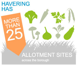 img-info-allotment